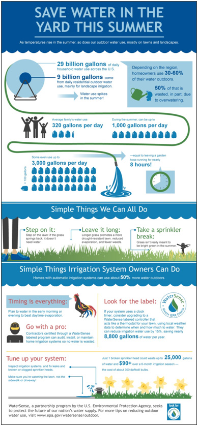 Save Water in the Summer