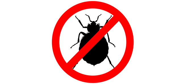 bye, bye bed bugs | national apartment association