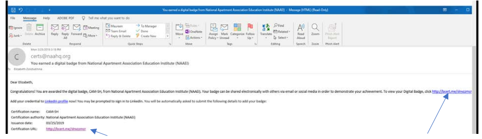 A screenshot of the BadgeCert email, with a blue arrow pointing to the URL where the user can download their credentials.