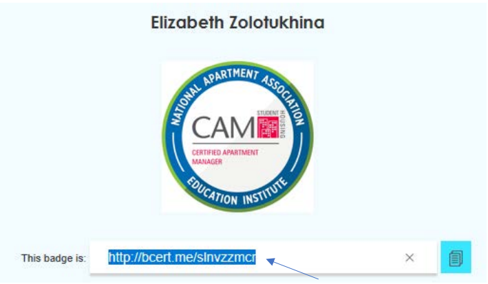 The URL where the badge can be accessed, with a blue arrow pointing to the selected text.