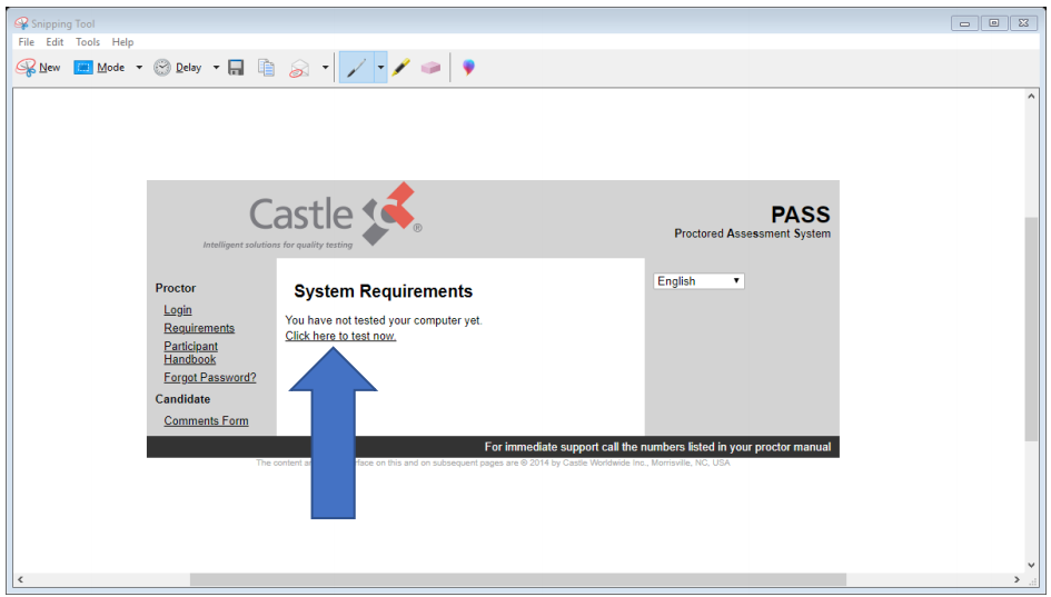 """A screen on the Castle website discussing system requirements. A blue arrow points to a button that says """"test now."""""""