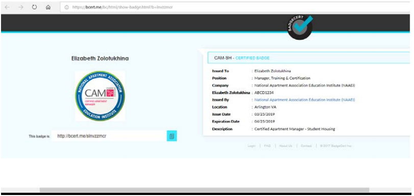 A screenshot of the website where the linked BadgeCert image takes the user.